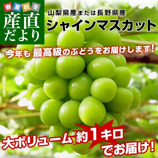 山梨県または長野県産 シャインマスカット1キロ(...