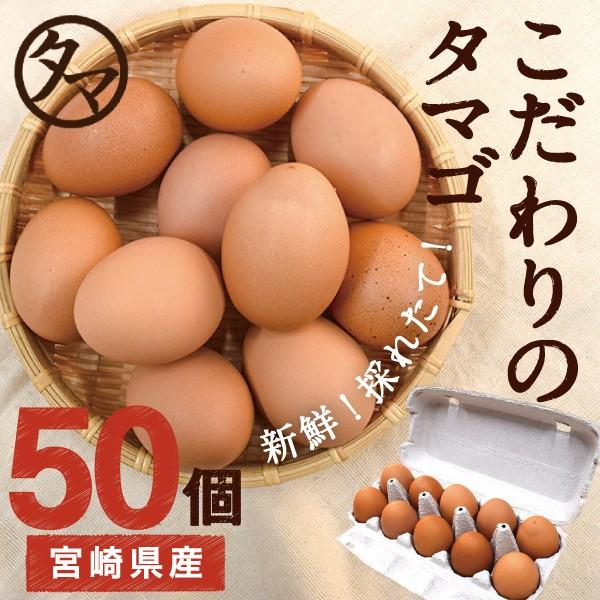 宮崎産 タマゴ 50個 新鮮 生卵 たまご マイナスイオン水 南九州産 お取り寄せ 玉子 九州 品質 衛生管理 卵 安全 高品質