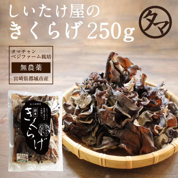 【送料無料】無農薬乾燥キクラゲ250g 南九州タマ...