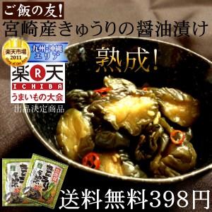 漬け物 宮崎産 きゅうりの醤油漬け 100g×2袋セッ...