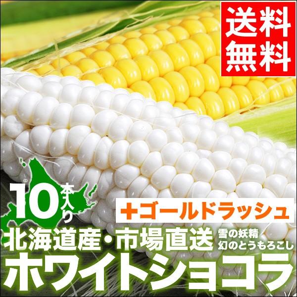 北海道産 とうもろこし ホワイトショコラ・ゴール...