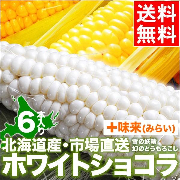 北海道産 とうもろこし 送料無料 ホワイトショコ...