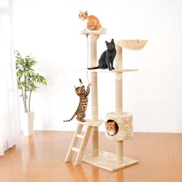 キャットタワー 猫じゃらしプレゼント 据え置き ...