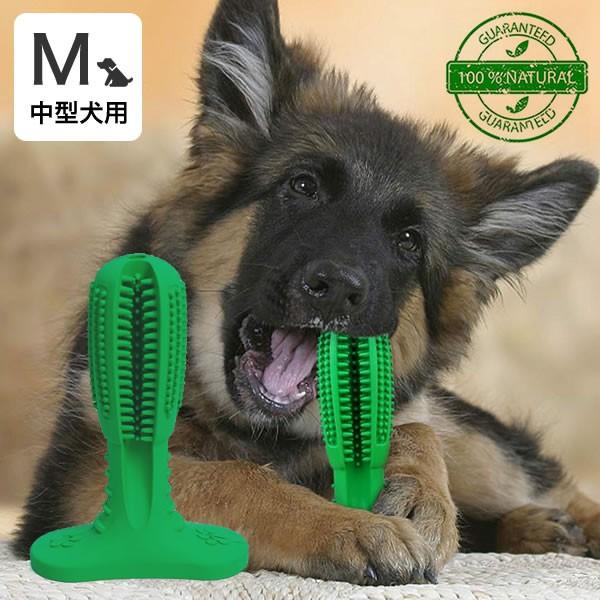 犬用歯ブラシ 360°設計 噛んで遊びながら歯磨き ...