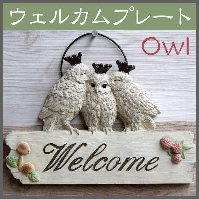 tucウェルカムプレート(L)フクロウ【アニマルオ...