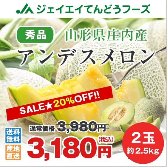【20%OFF】 山形県庄内産 アンデスメロン 約2.5kg...