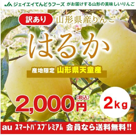 【訳あり】 山形県産 『はるか』 りんご 約2kg ポ...