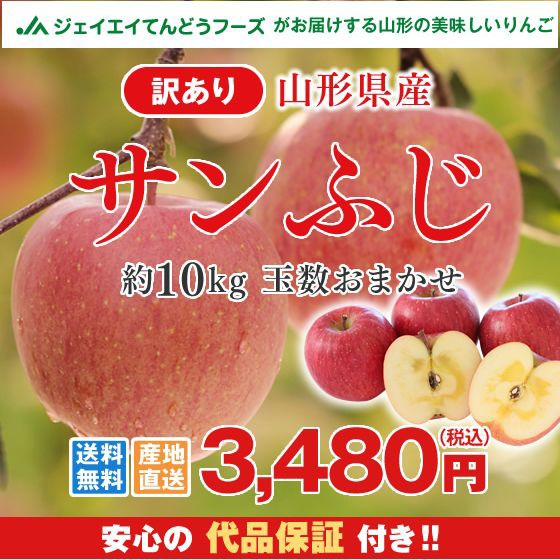 【訳あり】山形県産 『サンふじ』 りんご 約10kg ...