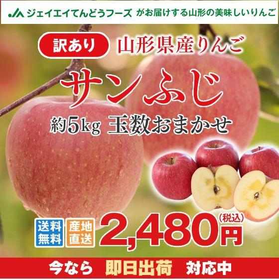 【訳あり】山形県産 サンふじ りんご 約5kg ご自...