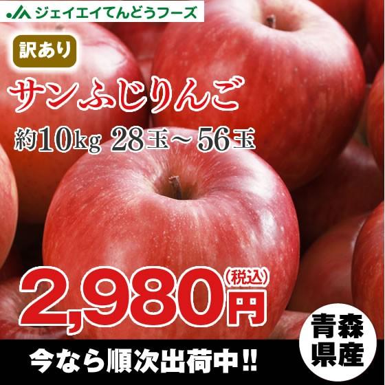 訳あり 青森県産 『サンふじ』 りんご 約10kg ap5...