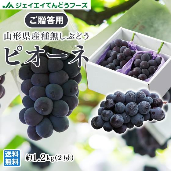 【贈答用】 大粒 ぶどう ピオーネ 山形県産 約1.4...