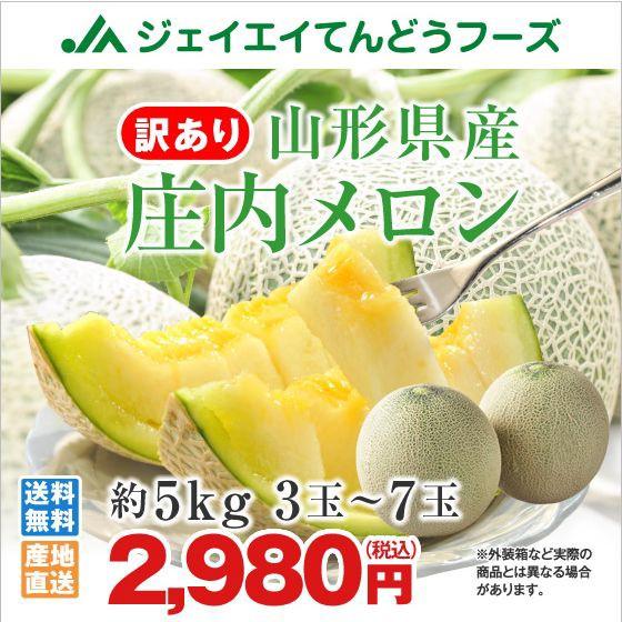【早期予約・ご自宅用】 訳あり メロン 約4〜5kg ...