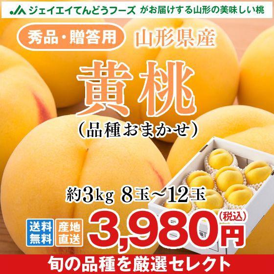 【秀品・贈答用】 山形県産 黄桃 約3kg (品種おまかせ)果肉硬め ギフト ※9月〜10月に出荷予定 pc12