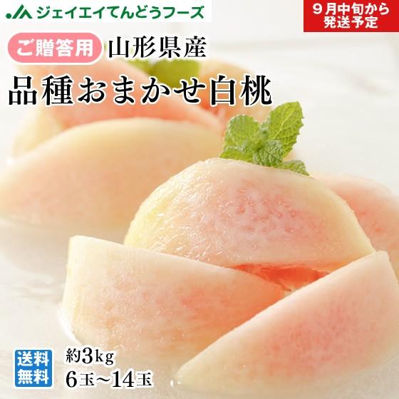 【秀品】 山形県産 『9月が旬の白桃』 約3kg (6玉〜14玉) 品種おまかせ 贈答用 pc13