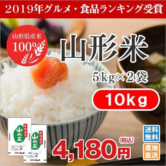 米 お米 山形米 精米 10kg (5kg×2袋)ryb10 【2...