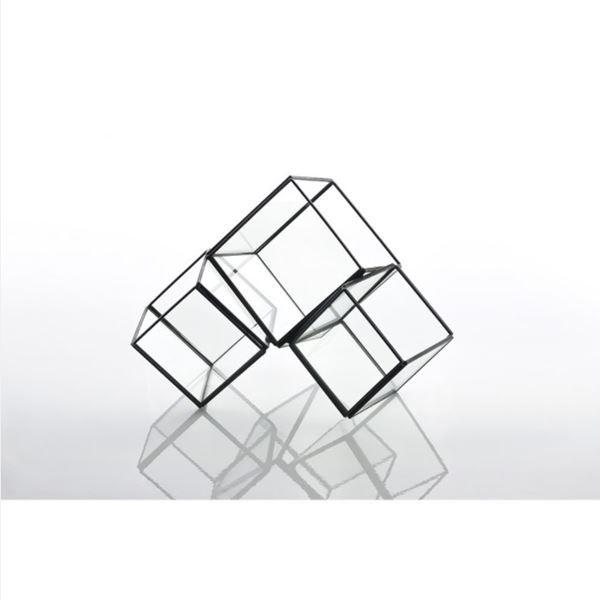 スパイス ガラステラリウム 3 ブロック #GFGY...