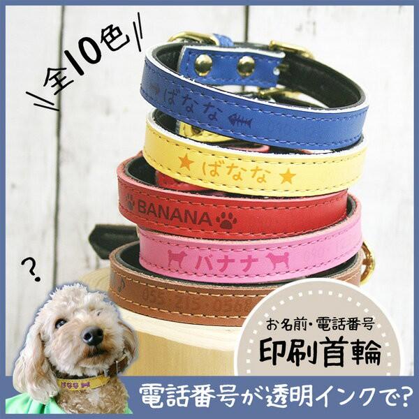 メール便 送料無料 犬 首輪 名入れ 迷子札 小型犬...
