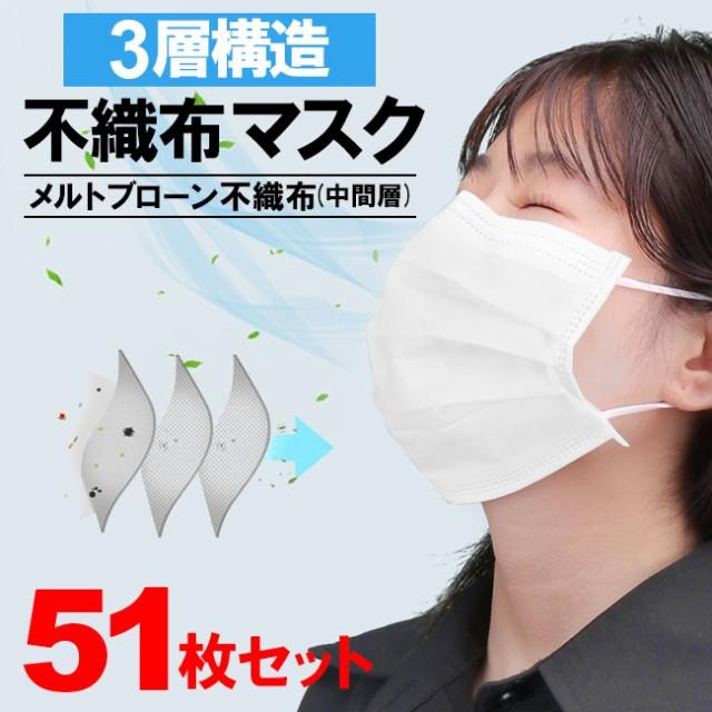 マスク51枚 3層構造 不織布 お得 使い捨てマスク ...
