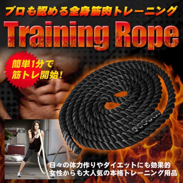 体幹を鍛える 振るだけ筋トレ 簡単トレーニング ...