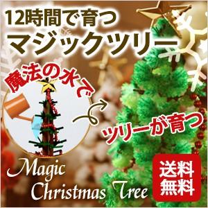 クリスマス ツリー ミニ マジッククリスマスツリー 12時間で育つ不思議なツリー 【メール便 送料無料】