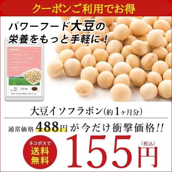 【クーポンで155円】 大豆イソフラボン 約1ヵ月分...