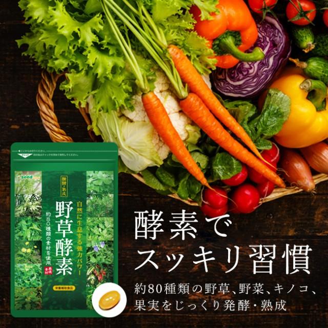 ダイエットサプリ 酵素 野草酵素 約5ヵ月分 サプ...