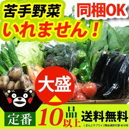 【 送料無料 】 九州 熊本産 定番野菜 10品以上保...