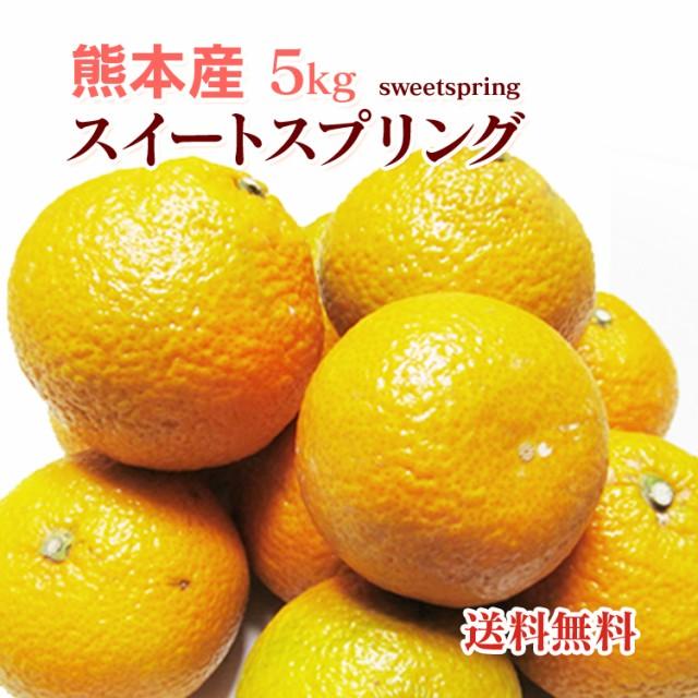 【 送料無料 】 熊本産  スイートスプリング  5kg...