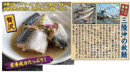 三陸産 鯖水煮缶40缶(55632-000)
