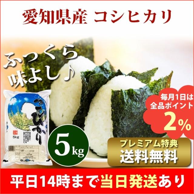 米 5kg 愛知県産 コシヒカリ 令和2年 お米 5kg プ...