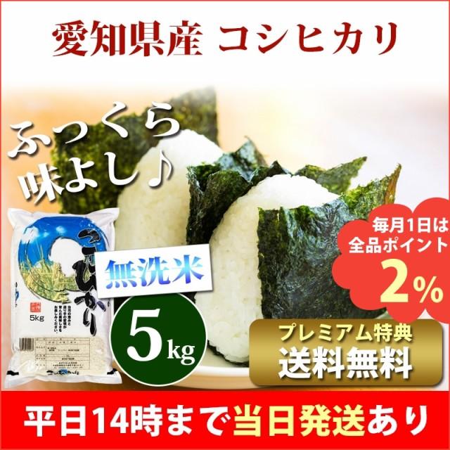 米 無洗米 5kg 愛知県産 コシヒカリ 令和2年 お米...