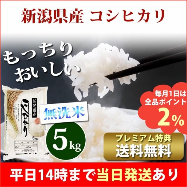 米 無洗米 5kg 新潟県産 コシヒカリ 1等米 特A 令...