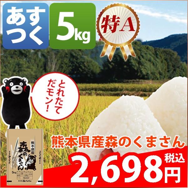 お米 5kg 安い 特A 熊本県 白米 森のくまさん 29...