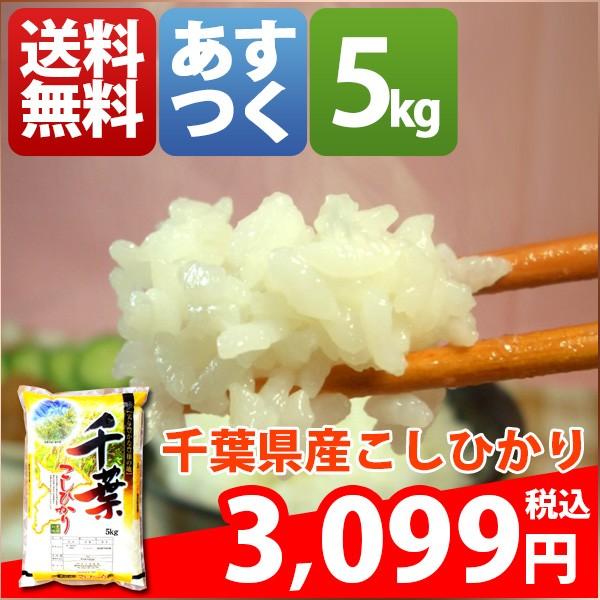 お米 5kg 安い 1等米 千葉県 白米 こしひかり 29...