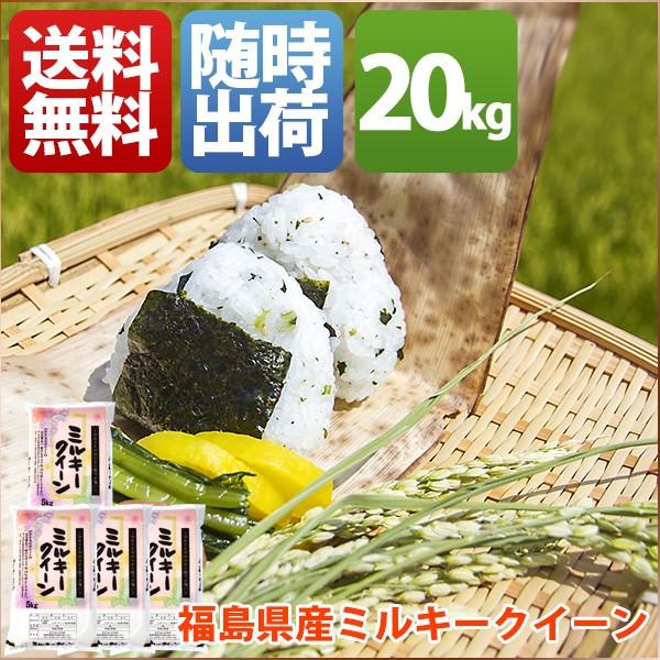 お米 20kg 安い 1等米 小分け 5kg 福島県 白米 新...