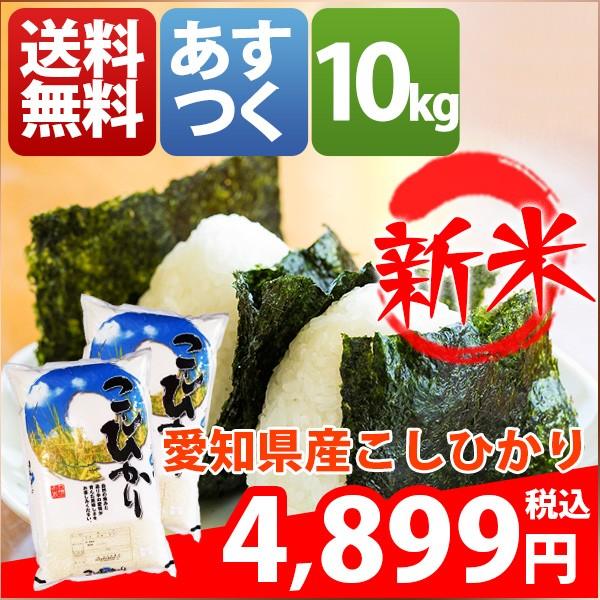 お米 10kg 安い  愛知県 白米 新米 こしひかり 30...