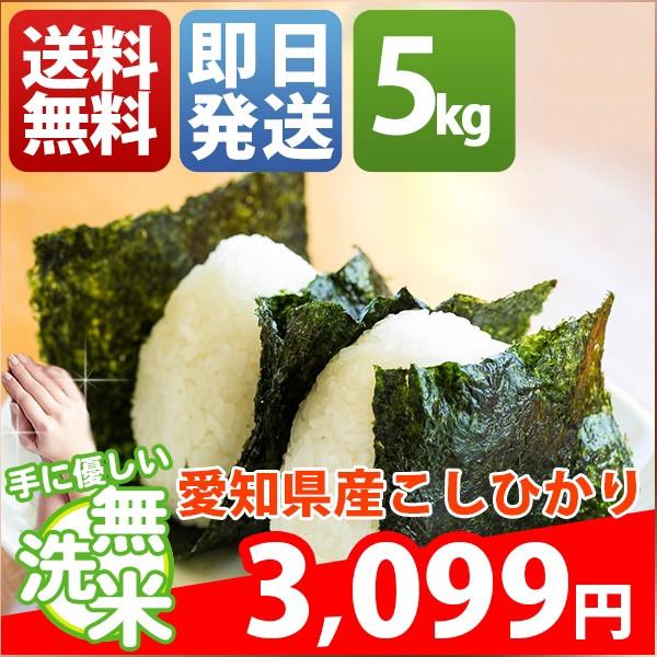 お米 5kg 安い 愛知県 無洗米 新米 こしひかり 30...