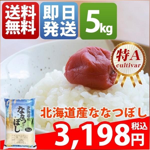 お米 5kg 安い 1等米 北海道 白米 ななつぼし 30...