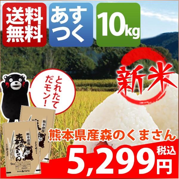 お米 10kg 安い 熊本県 白米 新米 森のくまさん 3...
