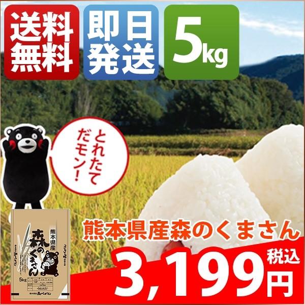お米 5kg 安い 熊本県 白米 新米 森のくまさん 30...