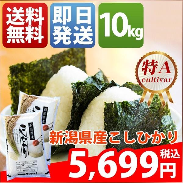 お米 10kg 安い 1等米 新潟県 白米 新米 コシヒカ...