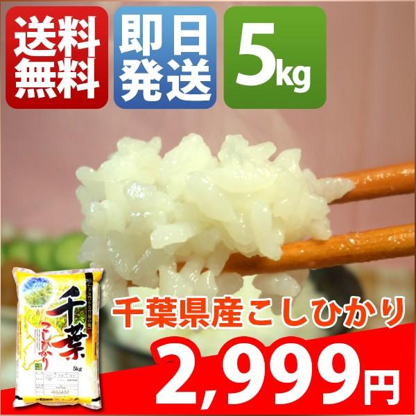 お米 5kg 安い 1等米 千葉県 白米 新米 コシヒカ...