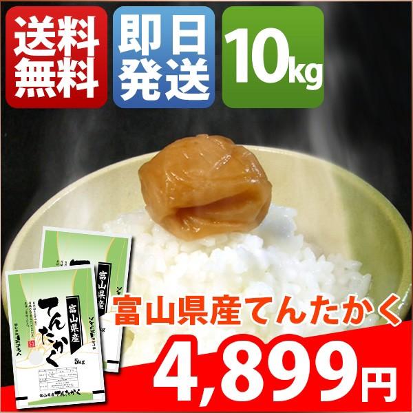 お米 10kg 安い 1等米 富山県 白米 てんたかく 30...