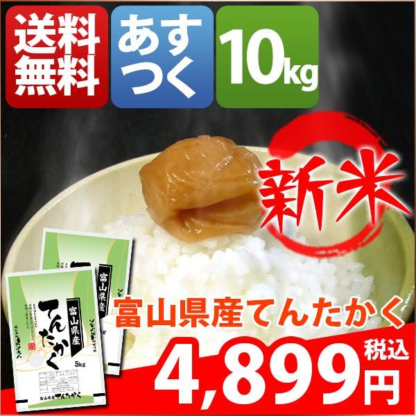 お米 10kg 安い 1等米 富山県 白米 新米 てんたか...
