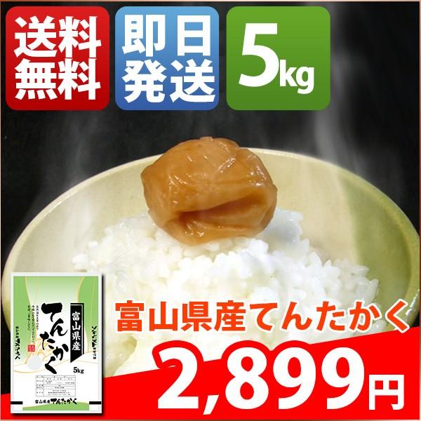 お米 5kg 安い 1等米 富山県 白米 新米 てんたか...
