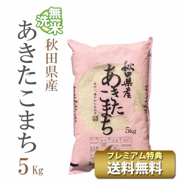 米 無洗米 5kg 秋田県産 あきたこまち 1等米 令和...