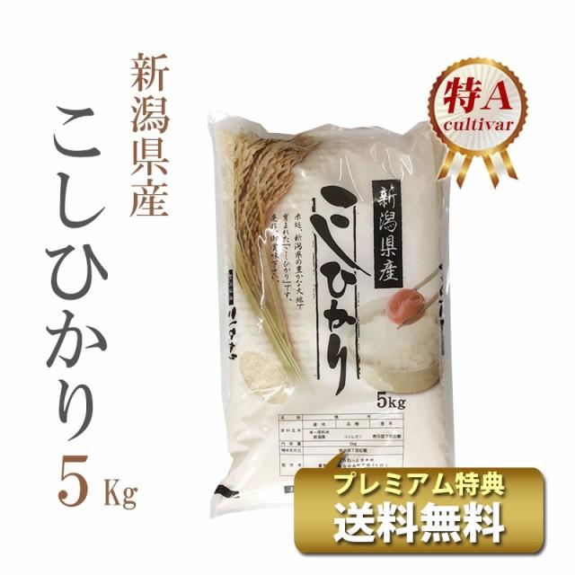 米 5kg 新潟県産 コシヒカリ 1等米 特A 令和2年 ...