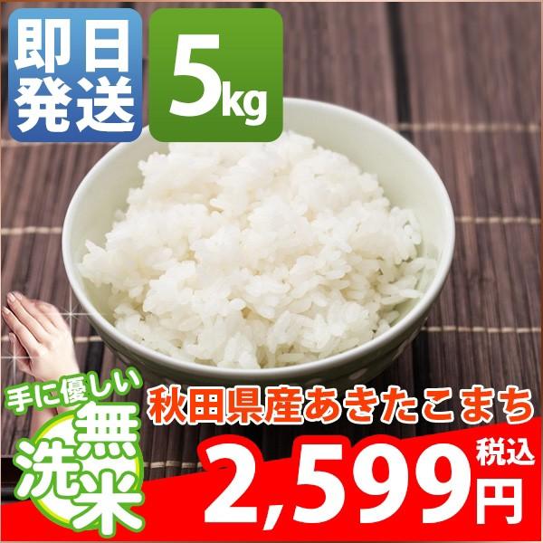 無洗米 5kg 送料無料 新米 あきたこまち 秋田県産...