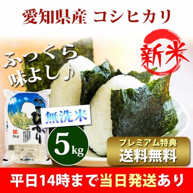 新米 米 無洗米 5kg 愛知県産 コシヒカリ 令和3年...