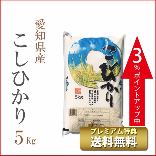 タイムセール 米 5kg 愛知県産 コシヒカリ 令和2...